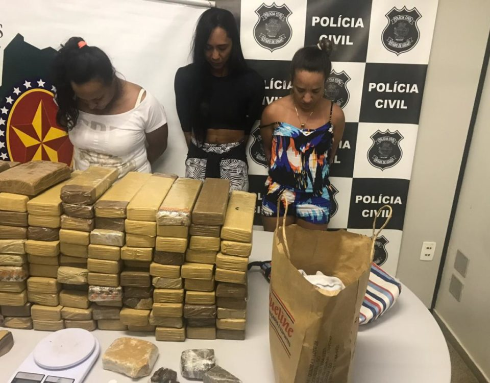5185ecbfa53 PC e PM de Cidade Ocidental apreendem quase 100 quilos de drogas em operação